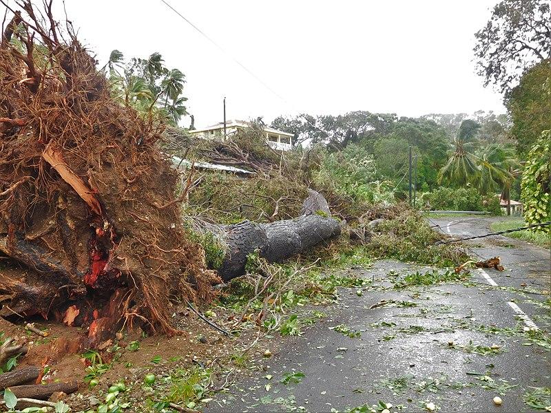 Australien Naturkatastrophen