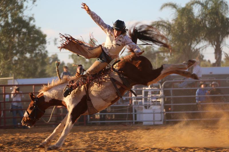 AUSTRALIEN EVENTS: Rodeo-Wettbewerb in Queensland – Sportevent oder Tierquälerei?