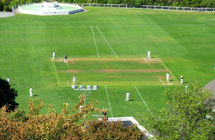 cricket regeln
