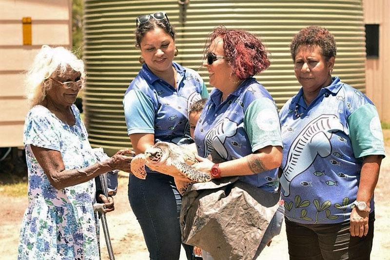 AUSTRALIEN REISE-TIPP: Zu Besuch bei Aborigines auf einer Schildkröten-Krankenstation