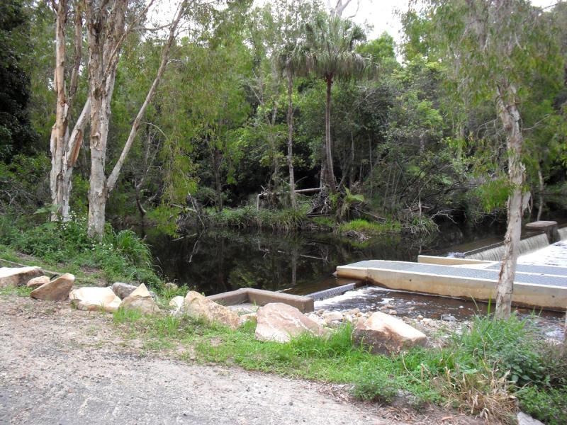 Waterpark Creek im Byfield Nationalpark
